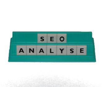 Seo Analyse